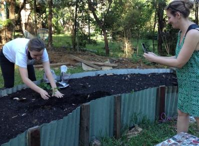 Inaugural planting